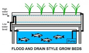 FLOOD-AND-DRAIN-STYLE-GROW-BEDS